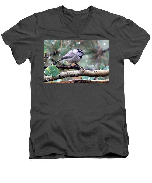 Mountain Chickadee On A Rainy Day Men's V-Neck T-Shirt