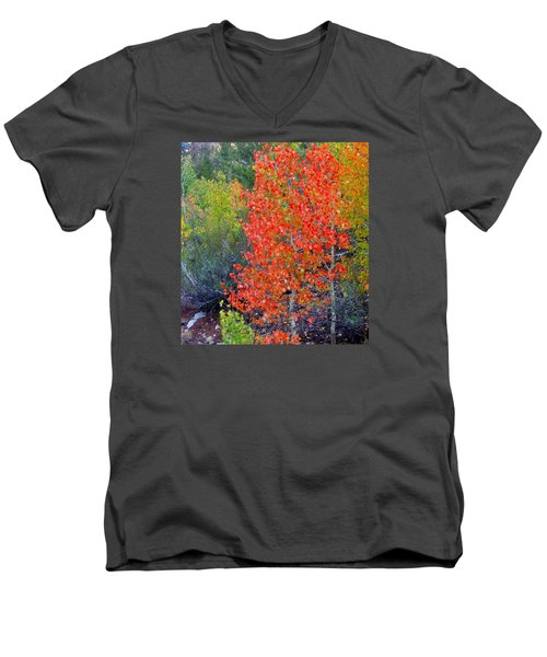 Men's V-Neck T-Shirt featuring the photograph Mountain Color by Marilyn Diaz
