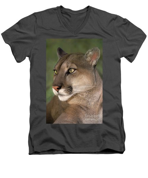 Mountain Lion Portrait Wildlife Rescue Men's V-Neck T-Shirt by Dave Welling