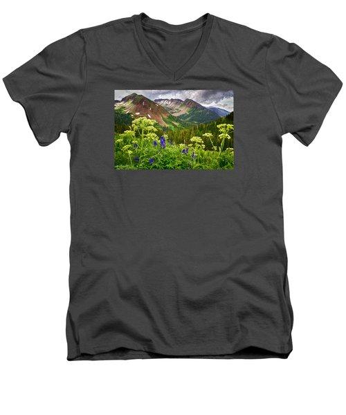 Mountain Majesty Men's V-Neck T-Shirt by Priscilla Burgers