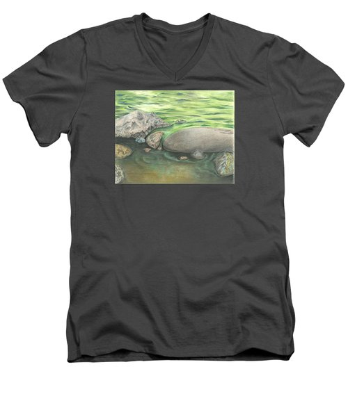 Mountain Stream Men's V-Neck T-Shirt by Troy Levesque