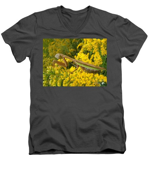 Men's V-Neck T-Shirt featuring the photograph Mr. Mantis by Sara  Raber