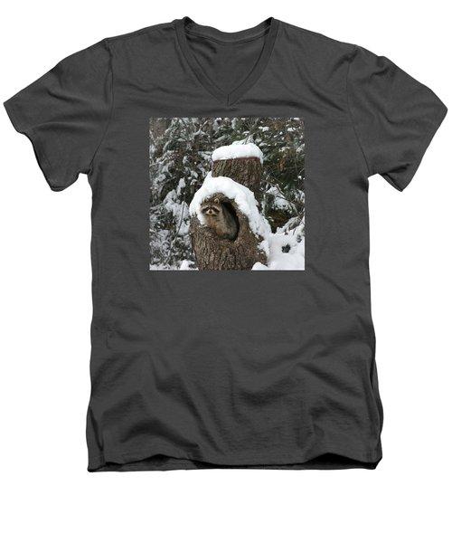 Mr. Raccoon Men's V-Neck T-Shirt