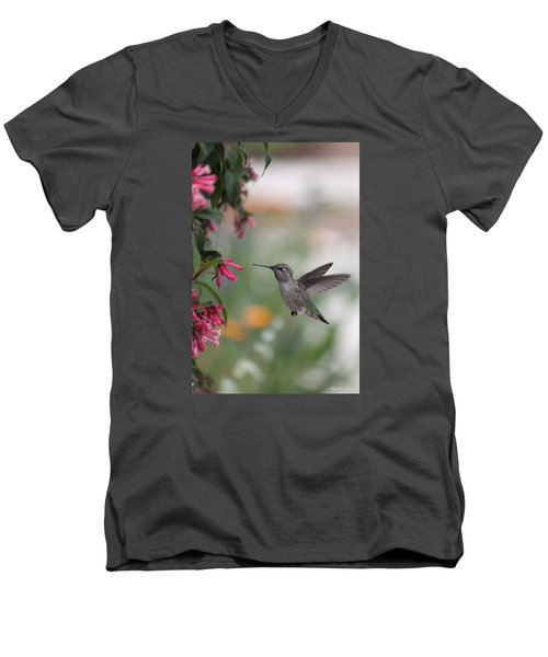 Men's V-Neck T-Shirt featuring the photograph Mrs. Little Anna's Hummingbird by Amy Gallagher