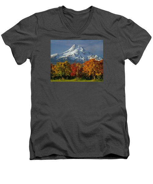 1m5117-mt. Hood In Autumn Men's V-Neck T-Shirt