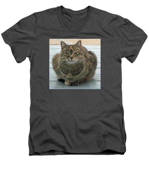 Muffin The Feral Cat Men's V-Neck T-Shirt