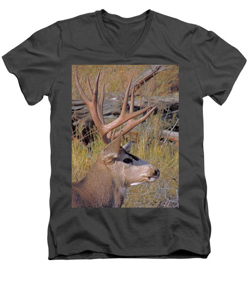 Men's V-Neck T-Shirt featuring the photograph Mule Deer by Lynn Sprowl