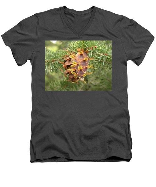 Multiple Generations Men's V-Neck T-Shirt