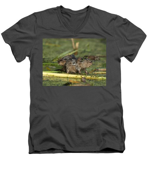 Men's V-Neck T-Shirt featuring the photograph Munchkins by James Peterson