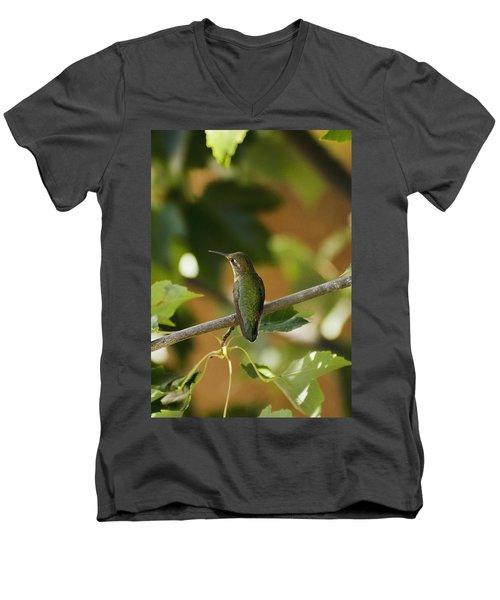 My Green Colored Hummingbird 4 Men's V-Neck T-Shirt