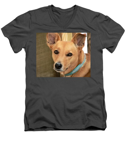 Dog - Cookie One Men's V-Neck T-Shirt