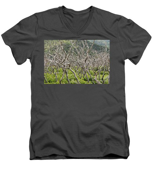 Men's V-Neck T-Shirt featuring the photograph Naked Ladies Dancing by Mary Carol Story