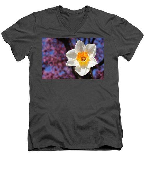 Narcissus And Cherry Blossoms Men's V-Neck T-Shirt