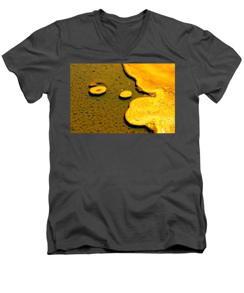 Natural Abstract Men's V-Neck T-Shirt