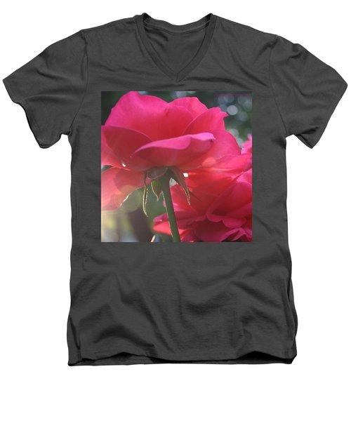 Natural Beauty Ladybird Red Rose Men's V-Neck T-Shirt