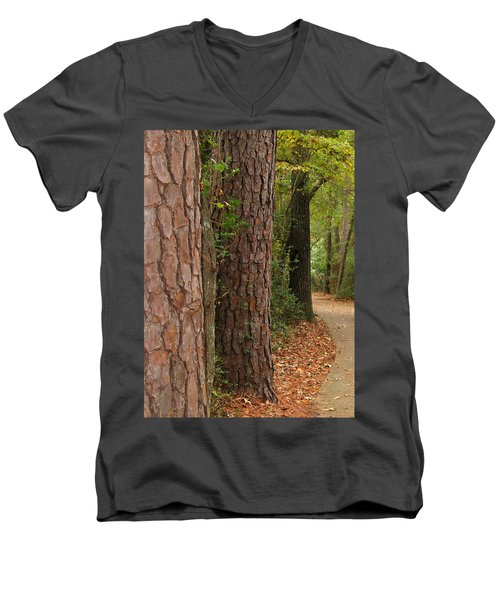 Natural Beauty Men's V-Neck T-Shirt by Connie Fox
