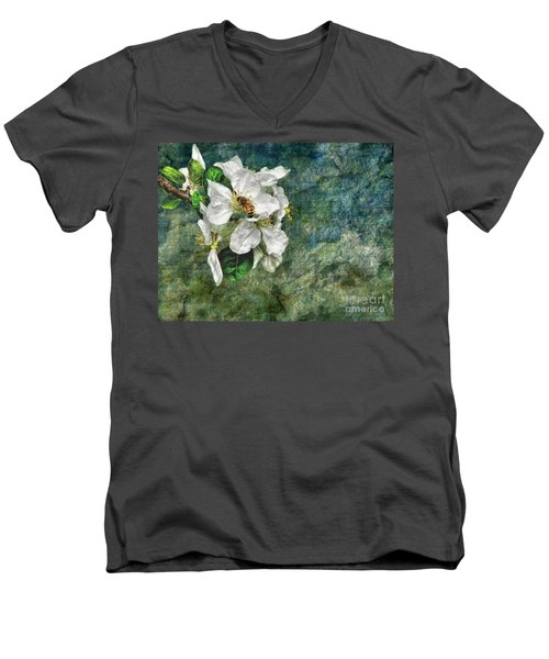 Natural High Men's V-Neck T-Shirt