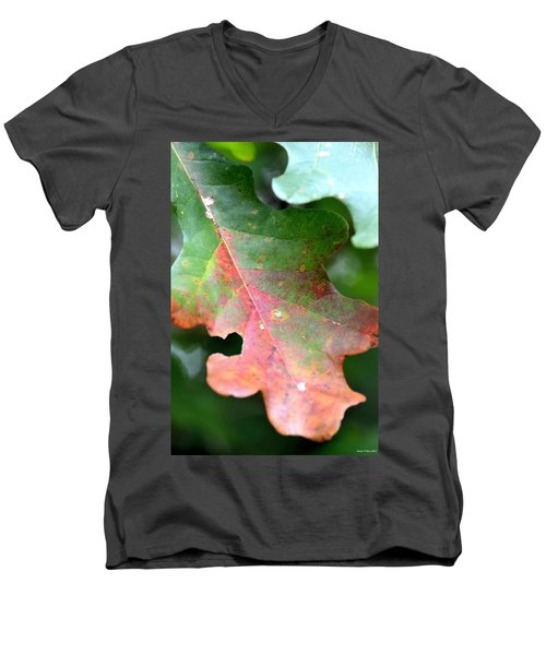 Natural Oak Leaf Abstract Men's V-Neck T-Shirt