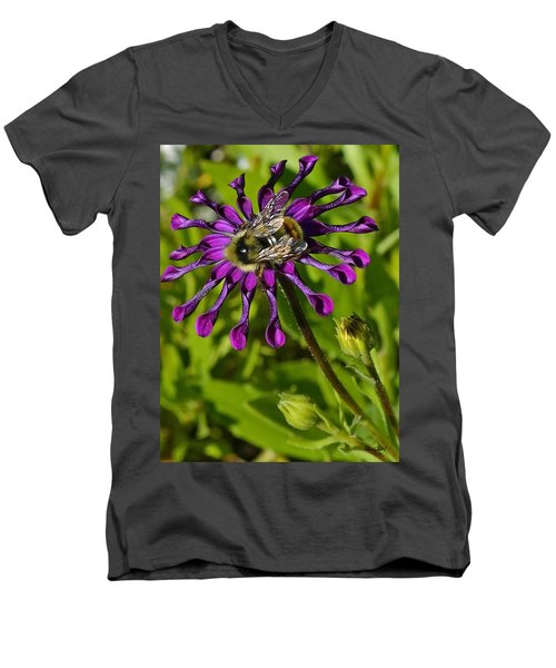 Nature At Work Men's V-Neck T-Shirt