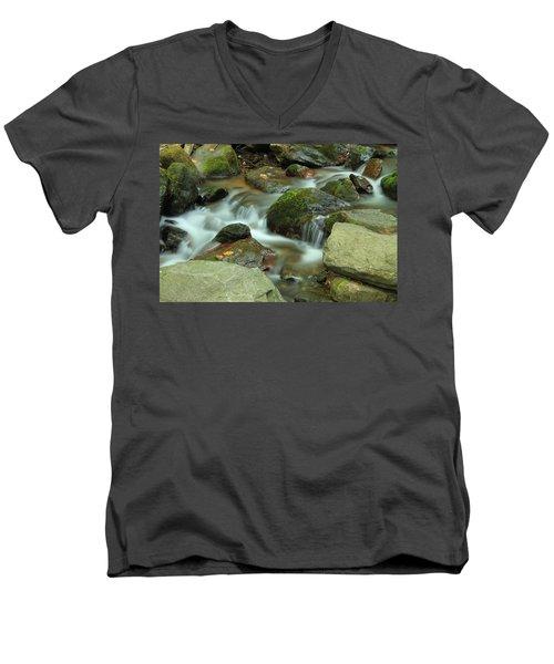 Nature's Beauty Men's V-Neck T-Shirt