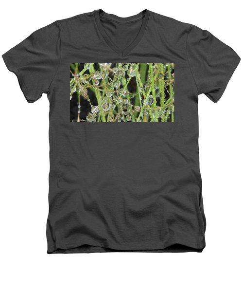 Natures Diamonds Men's V-Neck T-Shirt by Susan Garren