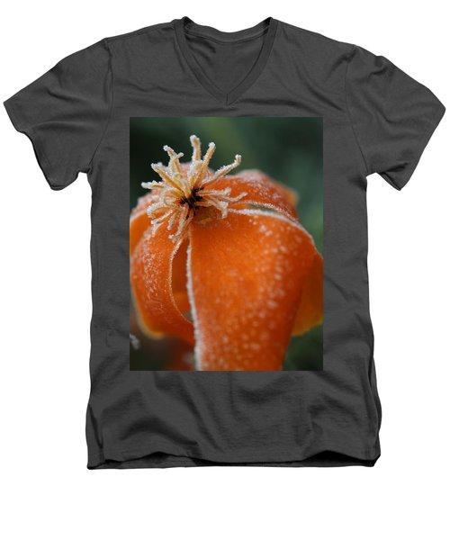 Natures Frost Men's V-Neck T-Shirt