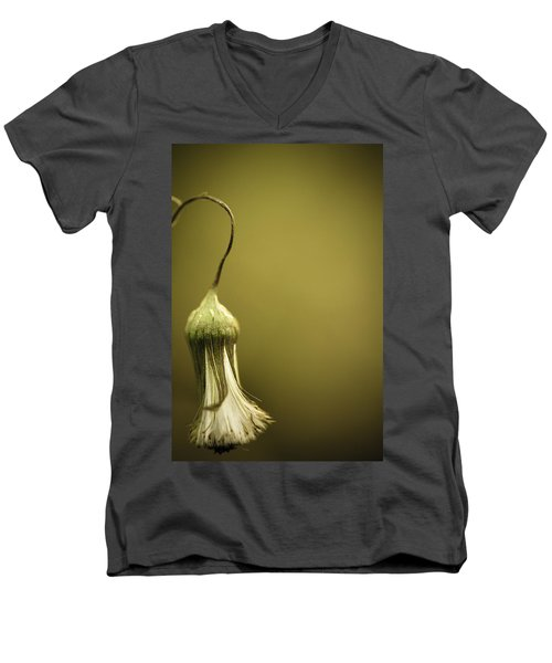 Nature's Little Lamp Men's V-Neck T-Shirt by Shane Holsclaw