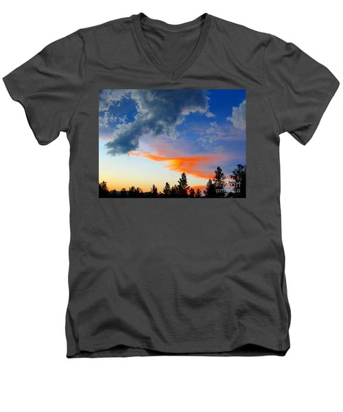 Men's V-Neck T-Shirt featuring the photograph Nature's Palette by Barbara Chichester