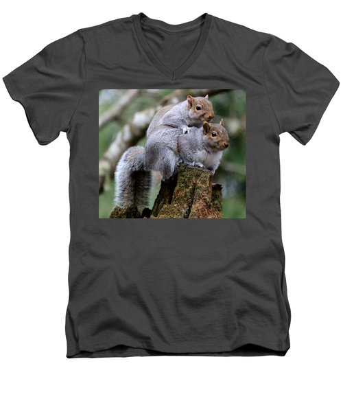 Fifty Shades Of Gray Squirrel Men's V-Neck T-Shirt