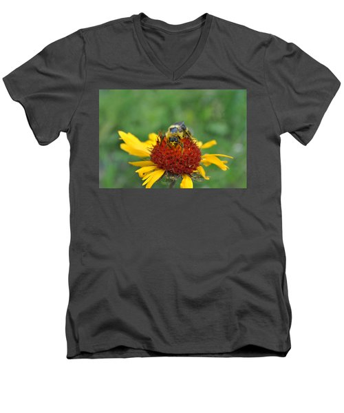Need More Pollen Men's V-Neck T-Shirt