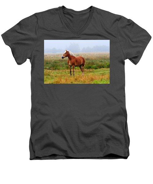 New Brunswick Horse Men's V-Neck T-Shirt