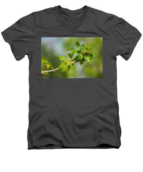 Newborn - Featured 3 Men's V-Neck T-Shirt