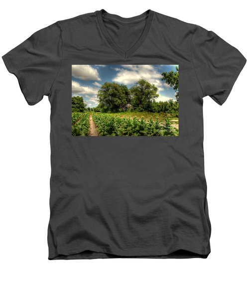 North Carolina Tobacco Farm Men's V-Neck T-Shirt by Benanne Stiens