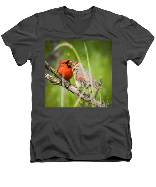 Northern Cardinal Male And Female Men's V-Neck T-Shirt