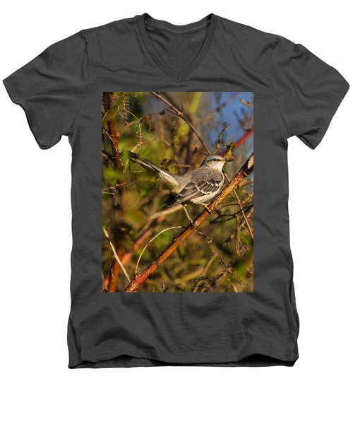 Northern Mockingbird Men's V-Neck T-Shirt by Chris Flees