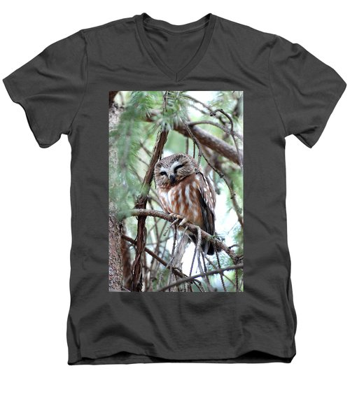 Northern Saw-whet Owl 2 Men's V-Neck T-Shirt