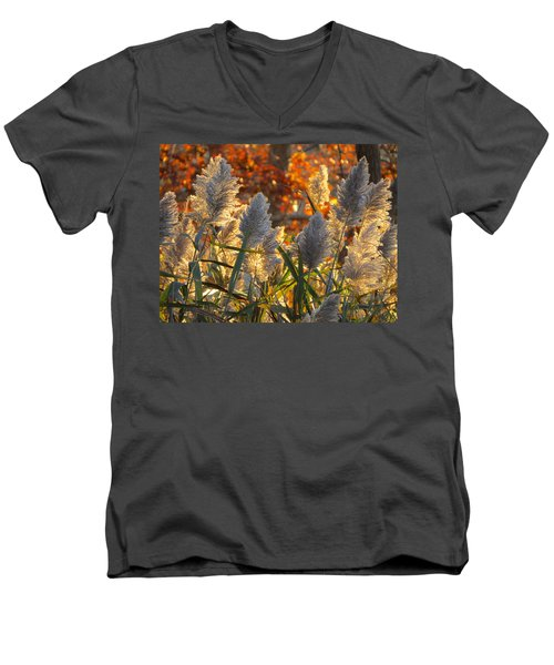 November Lights Men's V-Neck T-Shirt
