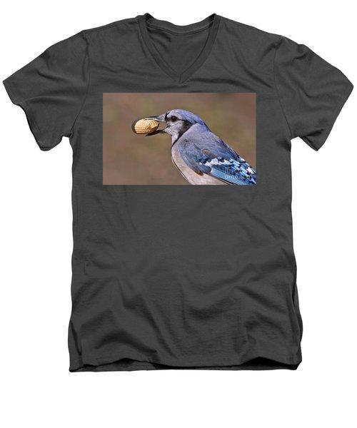 Nutty Bluejay Men's V-Neck T-Shirt