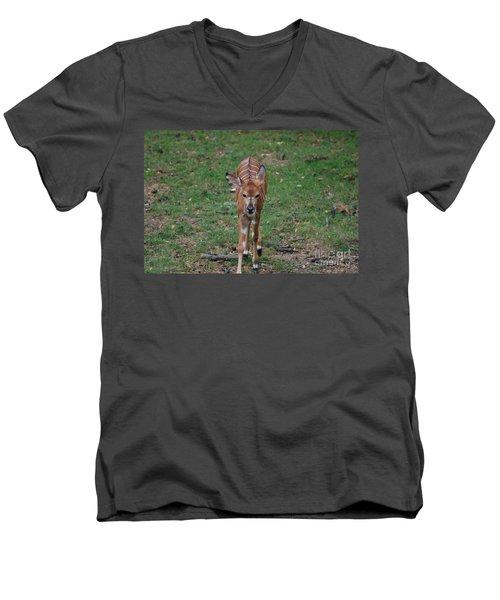 Nyala Men's V-Neck T-Shirt by DejaVu Designs