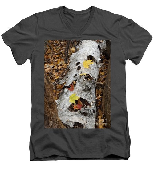 Old Fallen Birch Men's V-Neck T-Shirt
