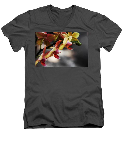 On Display Men's V-Neck T-Shirt by Greg Allore