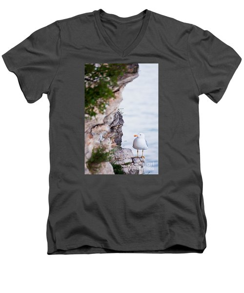 On The Cliffs Of Rocca Di Manerba Men's V-Neck T-Shirt