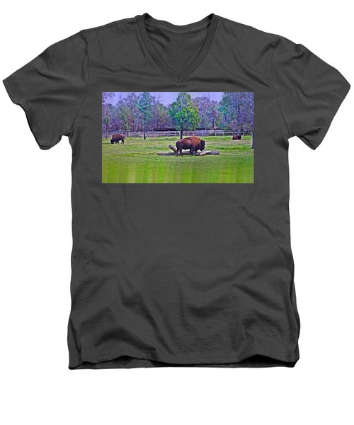 One Bison Family Men's V-Neck T-Shirt
