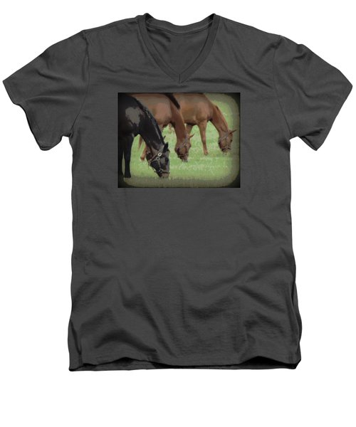 One Black Horse 1 Men's V-Neck T-Shirt