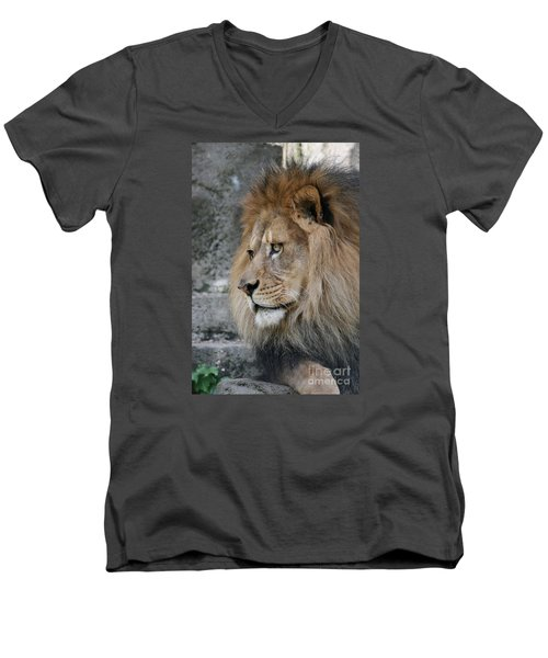 Men's V-Neck T-Shirt featuring the photograph Onyo #11 by Judy Whitton