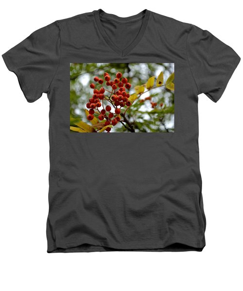 Orange Autumn Berries Men's V-Neck T-Shirt