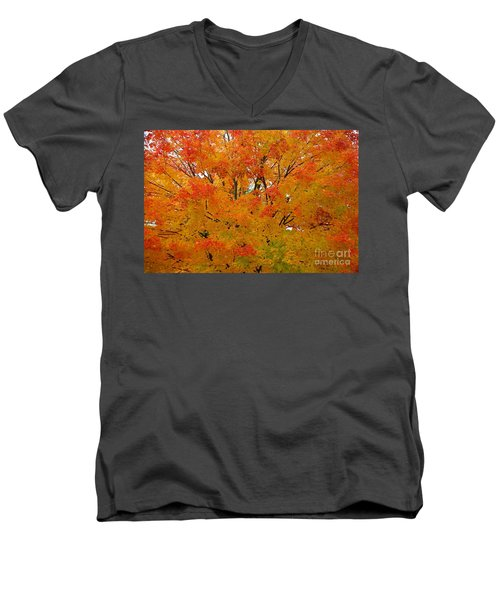 Men's V-Neck T-Shirt featuring the photograph Orange Crush by Robert Pearson