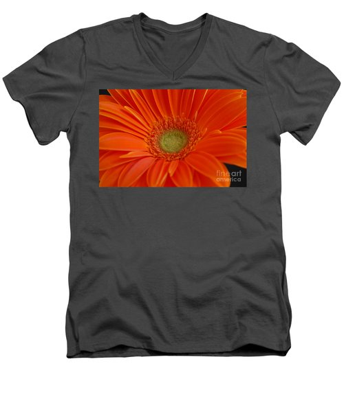 Orange Gerber Daisy Men's V-Neck T-Shirt by Patrick Shupert