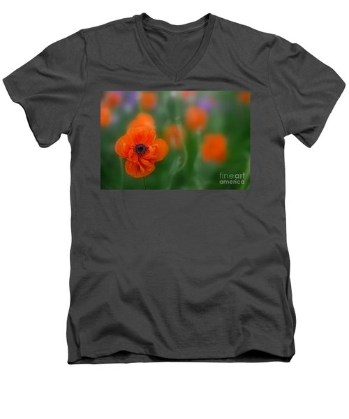 Orange Poppy Men's V-Neck T-Shirt