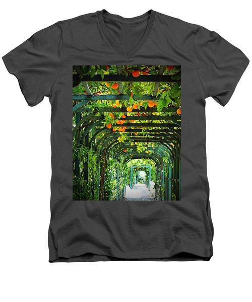 Men's V-Neck T-Shirt featuring the photograph Oranges And Lemons On A Green Trellis by Brooke T Ryan